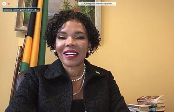 Jamaica asume Presidencia del Consejo Permanente de la OEA